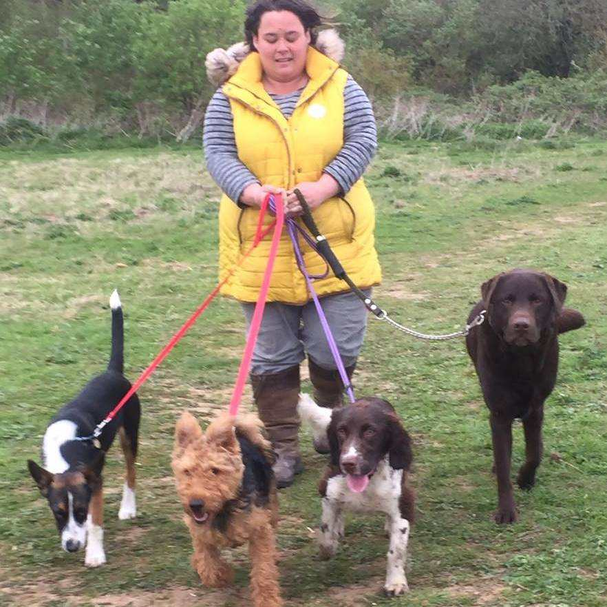 Sarah Husband with 4 dogs from Sarahs Pet Care Services