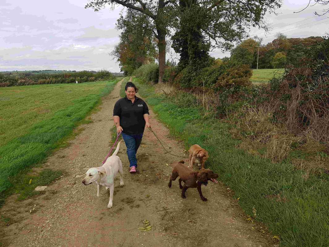 Sarah Husband with 3 dogs from Sarahs Pet Care Services